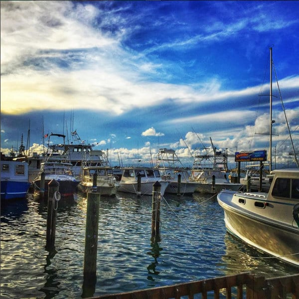 best charter fishing boats in florida
