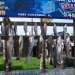 deep sea fishing report port canaveral florida