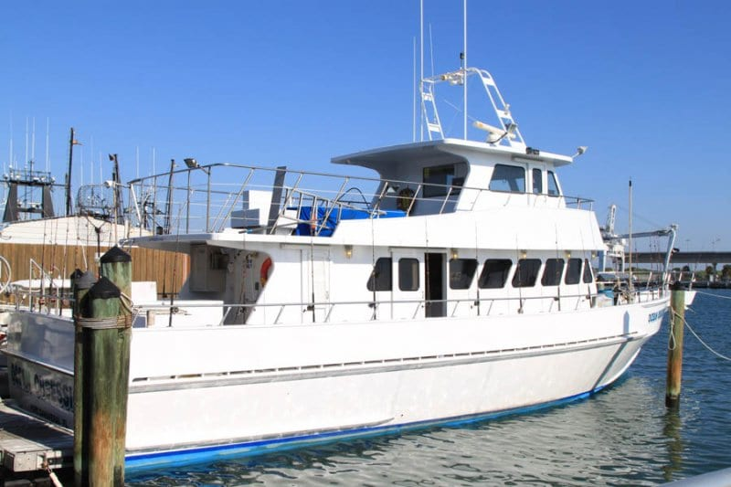 Best time ever ocean obsession fishing charter for Port canaveral fishing